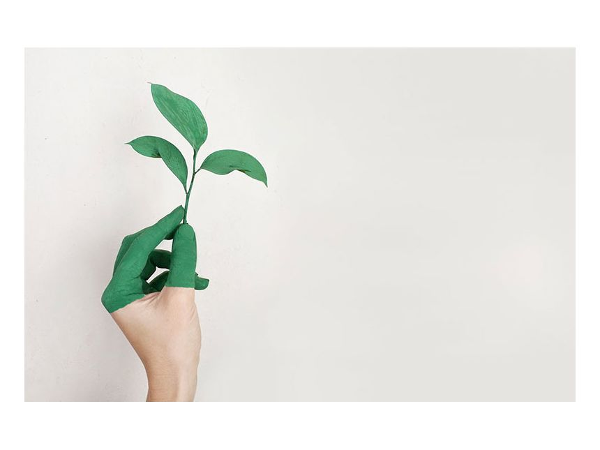 Green future for branded bags